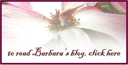 read Barbara's blog